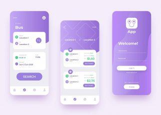 Custom Hybrid Mobile App